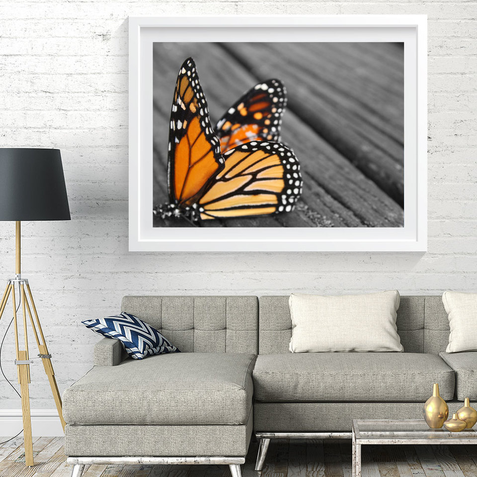 Art Print - Black & White Print with Monarch Butterfly